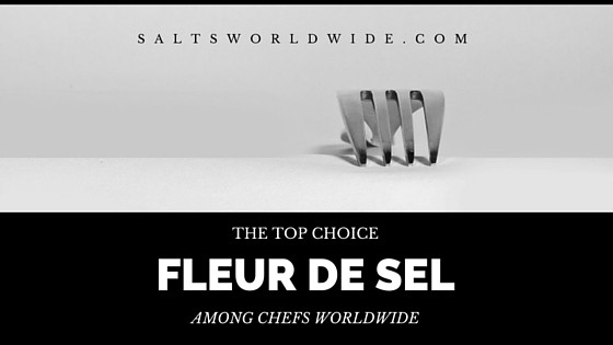 Fleur de Sel – The Top Choice Among Chefs Worldwide
