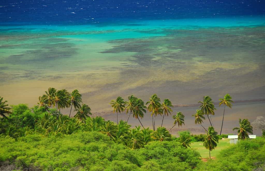Hawaiian Alaea Sea Salt