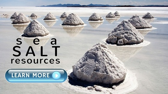 Sea Salt Resources
