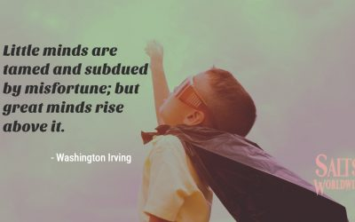 Little minds are tamed and subdued by misfortune; but great minds rise above it – Washington Irving