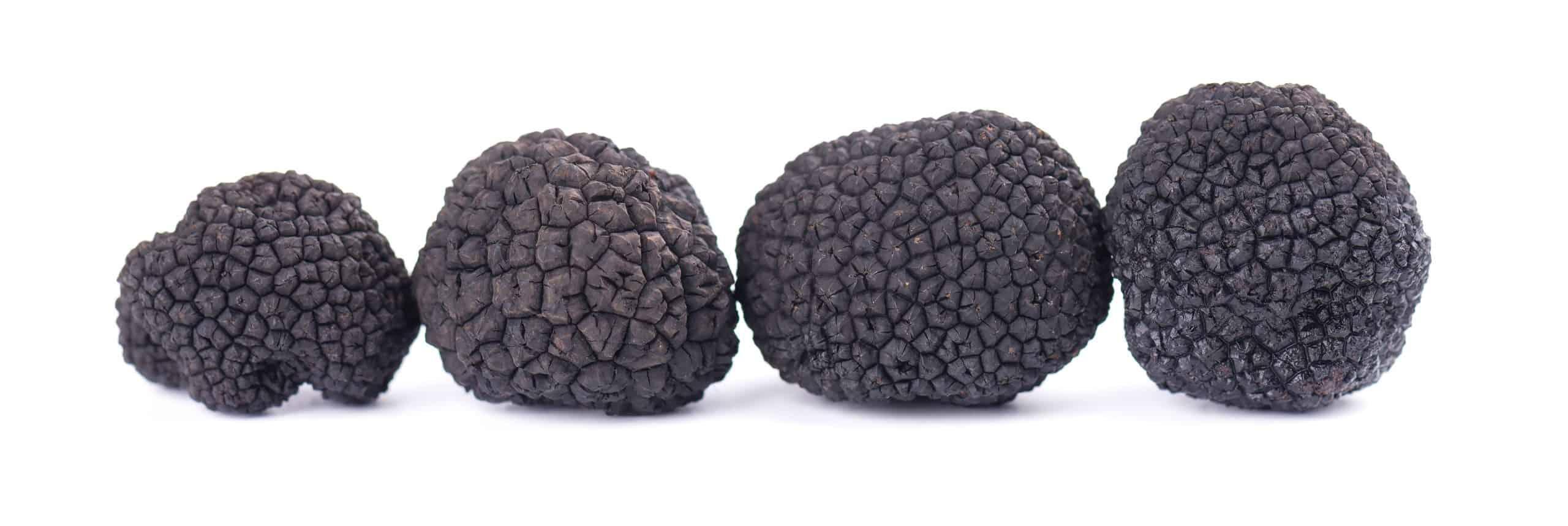 Black Truffles For Truffle Salt