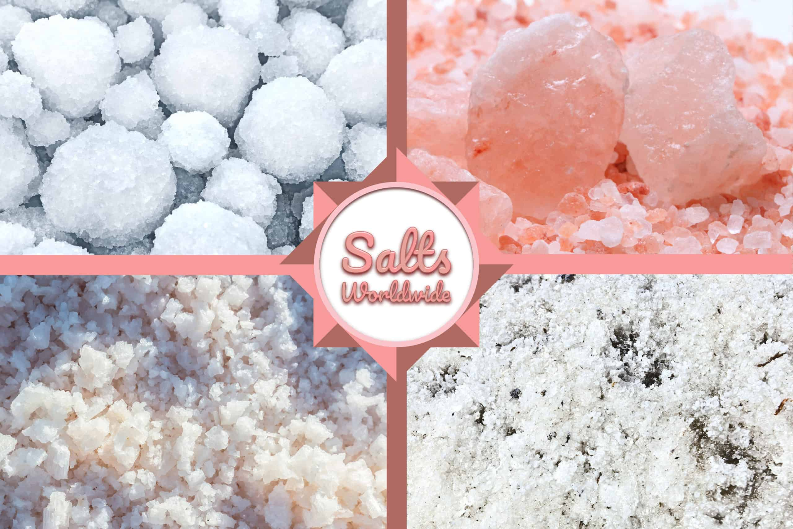 Salty Sampler